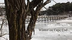 Winter on Cape Cod video thumbnail