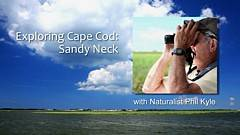 Exploring Sandy Neck video thumbnail