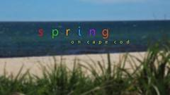 Spring on Cape Cod video thumbnail